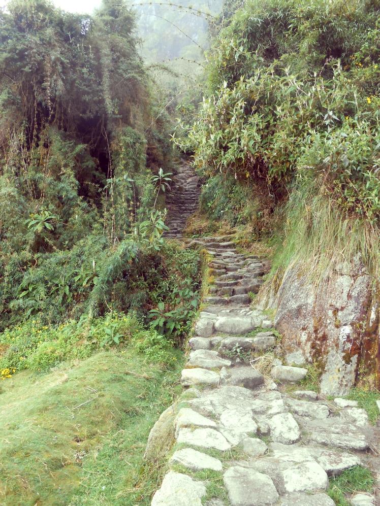 Peru170_RT.jpg